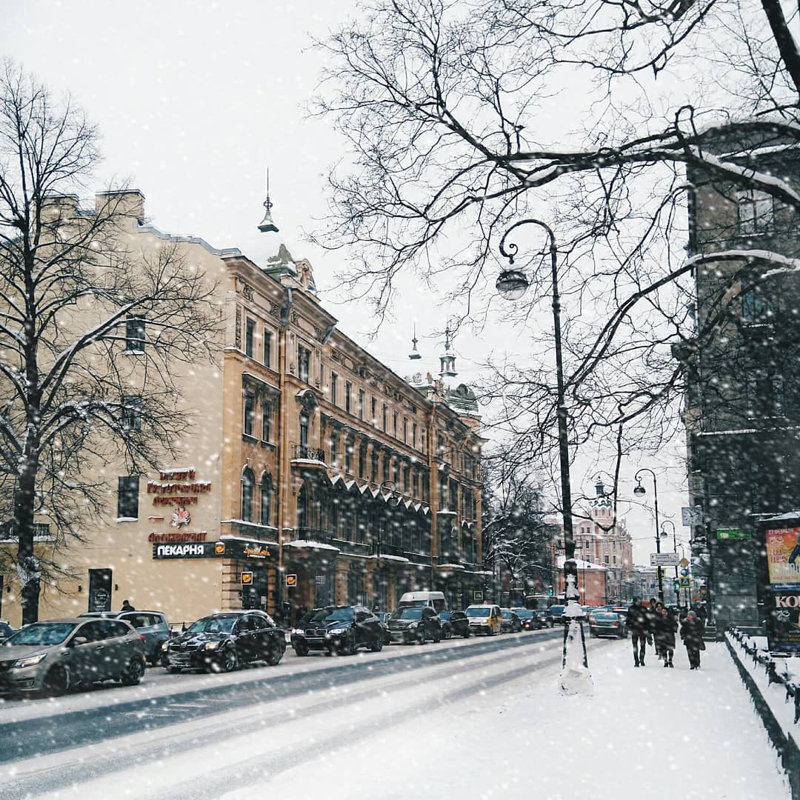 Winter Day in Saint Petersburg