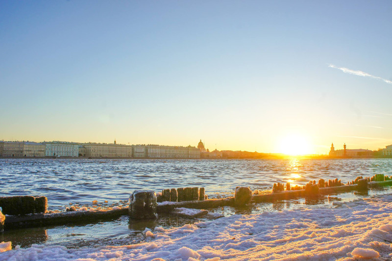 Things to do in St. Petersburg : wander at the beach