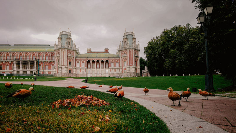 Tsaritsyno Museum in Moscow, Russia